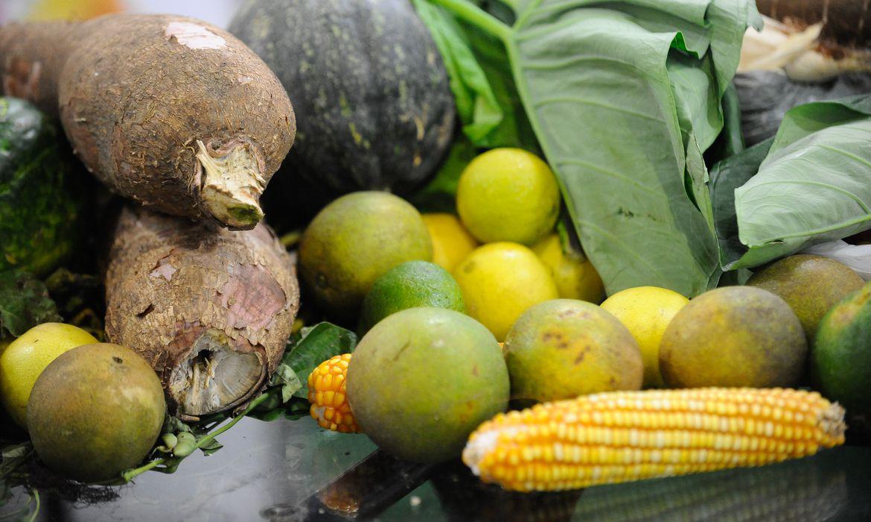Dia Mundial do Vegetarianismo é comemorado em 1ºde outubro